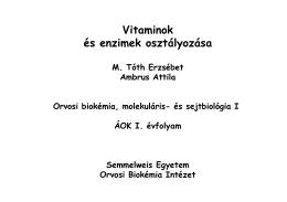 vitamin! - Semmelweis Egyetem