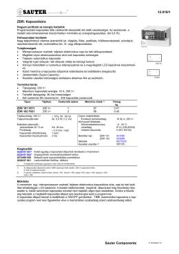 12.018/1 Sauter Components ZDR: Kapcsolóóra