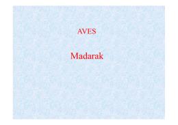 madarea2014_elso [Kompatibilitási mód].pdf