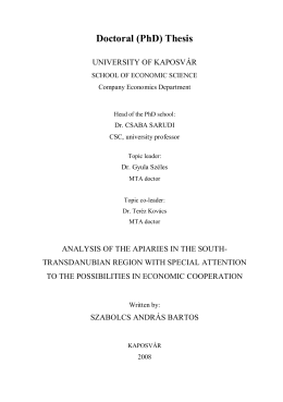 Doctoral (PhD) Thesis