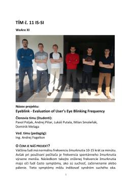 TÍM č. 11 IS-SI WeAre XI Názov projektu