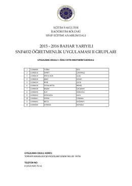 SNF4032 Öğretmenlik Uygulaması II Grupları