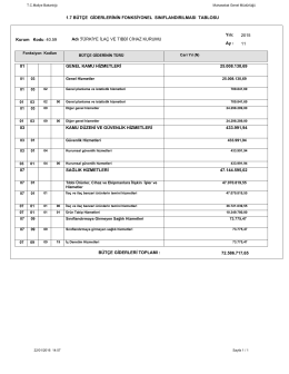 1.7 bütçe giderlerinin fonksiyonel sınıflandırılması tablosu 01 03 07