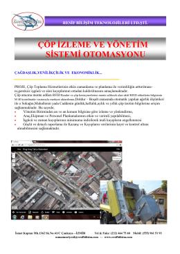 pdf dosyası