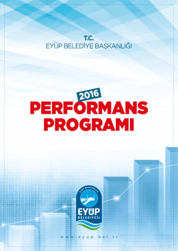 performans programı