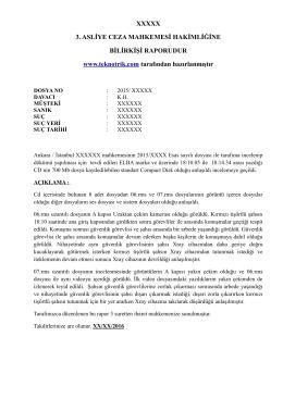 Pdf formatında bilirkişi rapor örneği