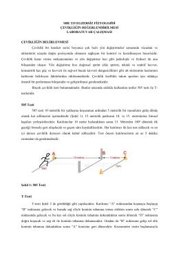sbe 215 egzersiz fizyolojisi çevikliğin değerlendirilmesi laboratuvar