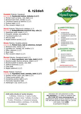 verzia pre tlac - PDF