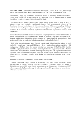 Smál-Szilaj Gábor, a Váci Dunakanyar Színház munkatársa, a Fónay