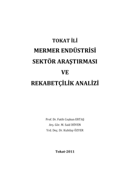 Tokat İli Mermer Endüstrisi Sektör Araştırması ve Rekabetçilik Analizi
