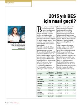 2015 yılı BES için nasıl geçti?