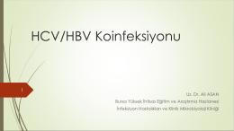 HBV DNA - Klimik