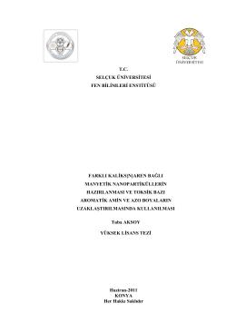 tc selçuk üniversitesi fen bilimleri enstitüsü farklı kaliks[n]