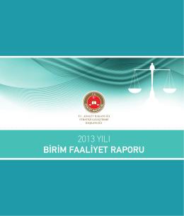 2013 Yılı Faaliyet Raporu - Strateji Geliştirme Başkanlığı