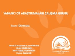 Yabancı Ot Araştırma Çalışmaları_İstem Türktemel