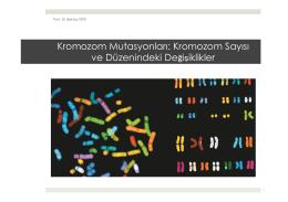 9. Kromozom Mutasyonları-Kromozom Sayısı ve Düzenindeki