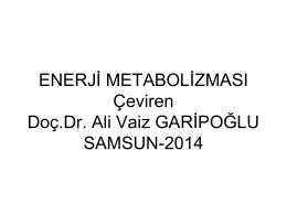 enerji metabolizması çeviri-15 şubat 2014