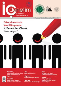 türkiye iç denetim enstitüsü yayınları
