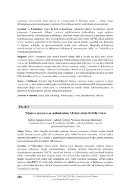 Silybum marianum Antioksidan Aktivitesinin Belirlenmesi