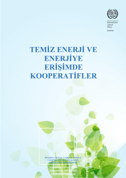 Raporun Türkçe Çevirisi İçin Tıklayınız