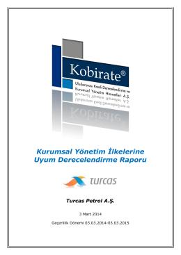 Kurumsal Yönetim İlkelerine Uyum Derecelendirme Raporu