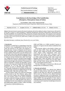 Contribution to the knowledge of the Scutelleridae