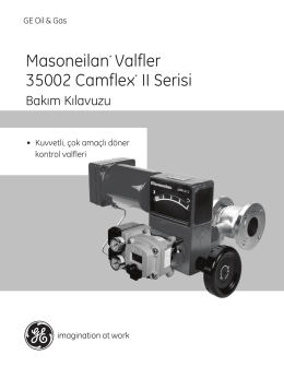 Masoneilan* Valfler 35002 Camflex* II Serisi