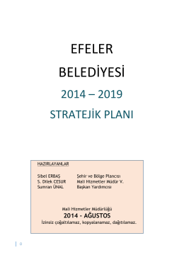 2014-2019 Stratejik Plan