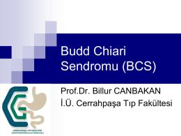 Budd Chiari Sendromu (BCS), Prof. Dr. Billur Canbakan