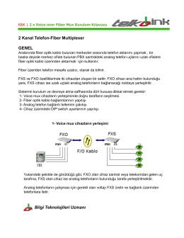 2 Kanal Analog Telefon Fiber Optik Çevirici