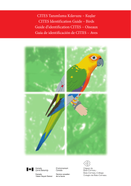 CITES Tanımlama Kılavuzu – Kuşlar CITES