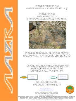 proje sahibinin adı mintek madencilik san. ve tic. a.ş. projenin adı
