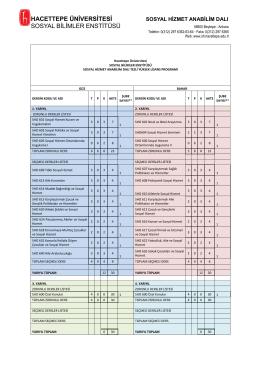 hacettepe üniversitesi sosyal bilimler enstitüsü