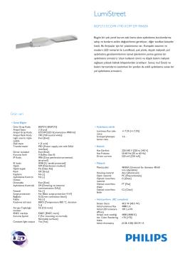 Product Leaflet: LumiRoad BGP213 yol aydınlatma armatürü