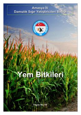 Amasya İli Damızlık Sığır Yetiştiricileri Birliği