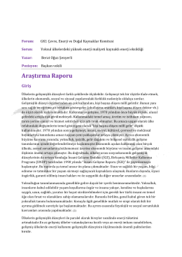 Araştırma Raporu - III. Model Birleşmiş Milletler Türkiye