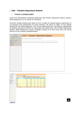 • CEO - Yönetim Raporlama Sistemi