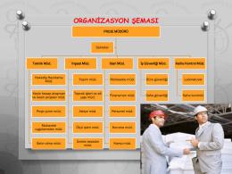 03 Organizasyon şeması