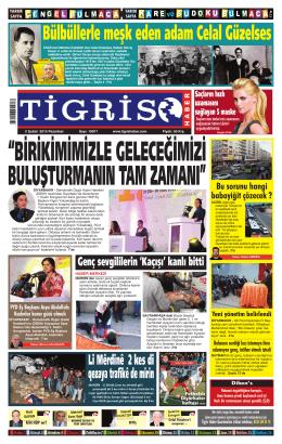 7 - Tigris Haber
