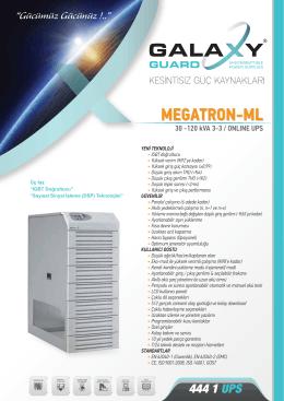 MEGATRON-ML