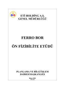 Ferro Bor Ön Fizibilite Etüdü