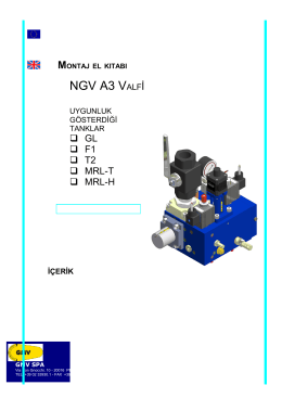 NGV A3 Elektronik Valf Kullanım Kılavuzu