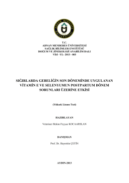 feyyaz kocaarslan_tez - Adnan Menderes Üniversitesi
