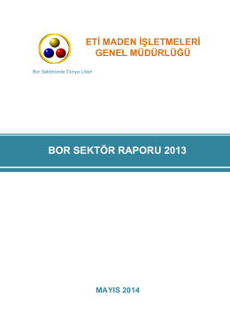 BOR SEKTÖR RAPORU 2013 - Enerji ve Tabii Kaynaklar Bakanlığı