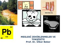 Heavy metal pollution - Çalışma ve Sosyal Güvenlik Bakanlığı
