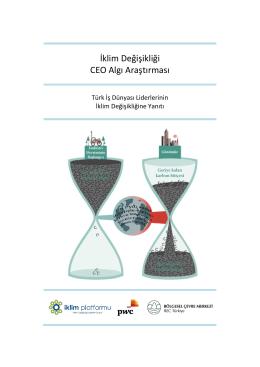 İklim Değişikliği CEO Algı Araştırması