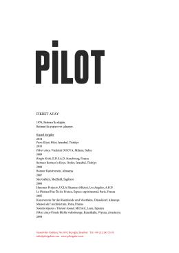Türkçe CV (pdf)