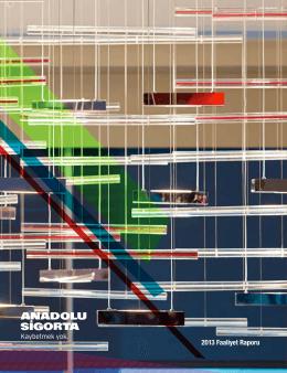 Faaliyet Raporu 2013/12