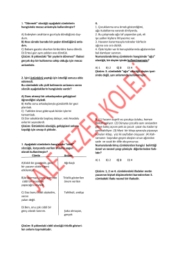 türkçe soru ve çözümleri