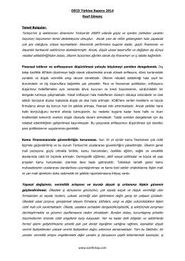 OECD TURKIYE RAPORU 2014